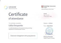 ostapenko classroom management yl